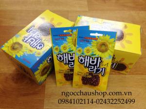 Hướng dương phủ socola Hàn Quốc